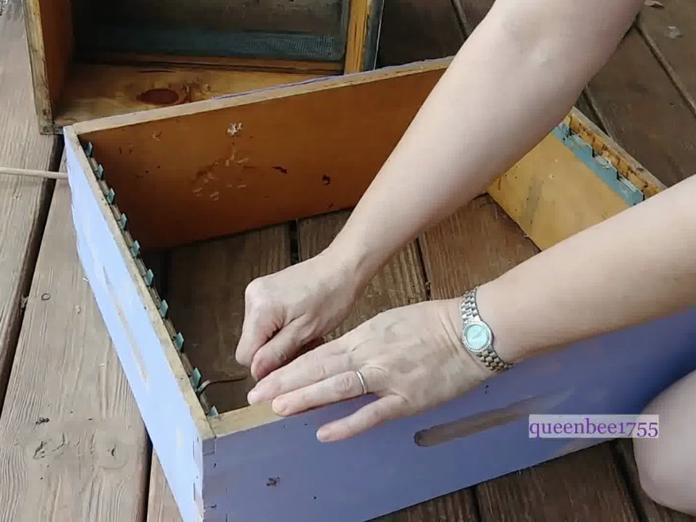 Buying and Maintaining Your Bee Hives